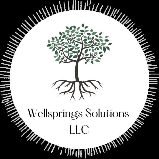 Wellsprings Solutions